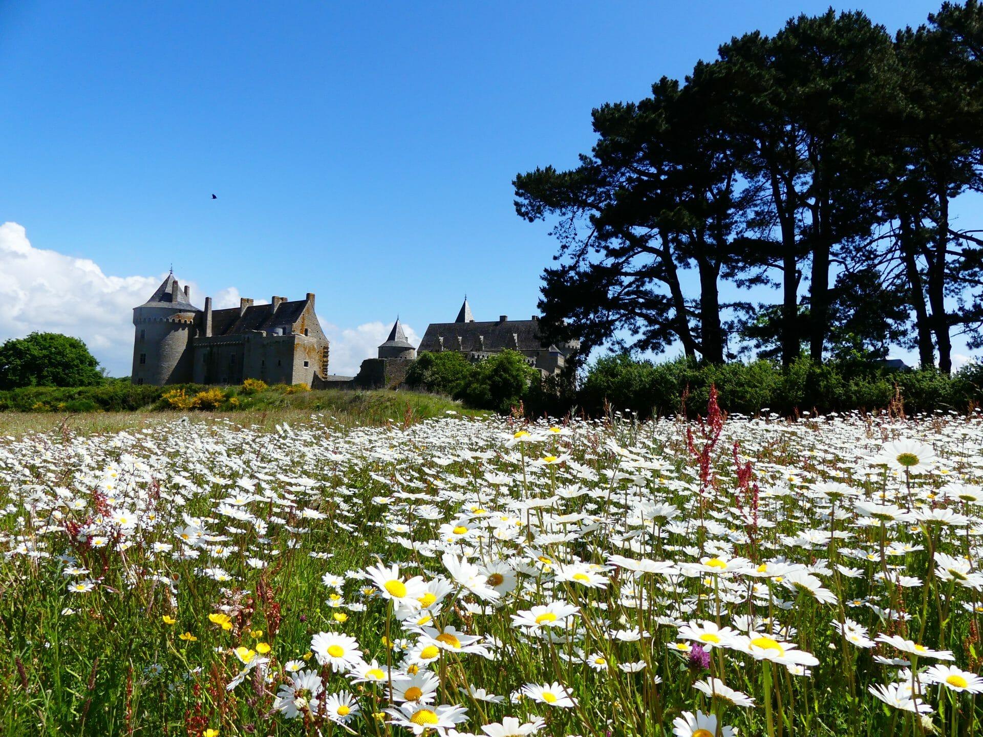 Château au milieu des fleurs