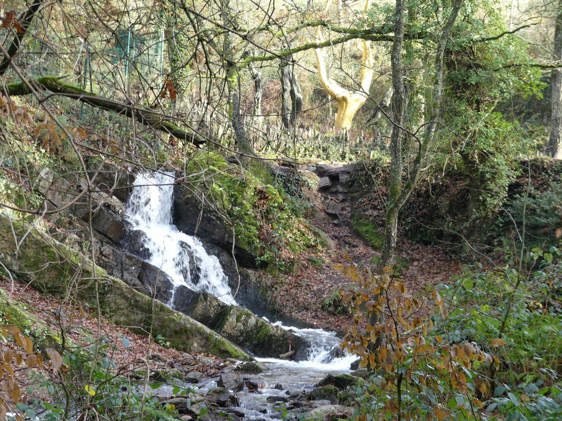 La forêt de Brocéliande en Bretagne