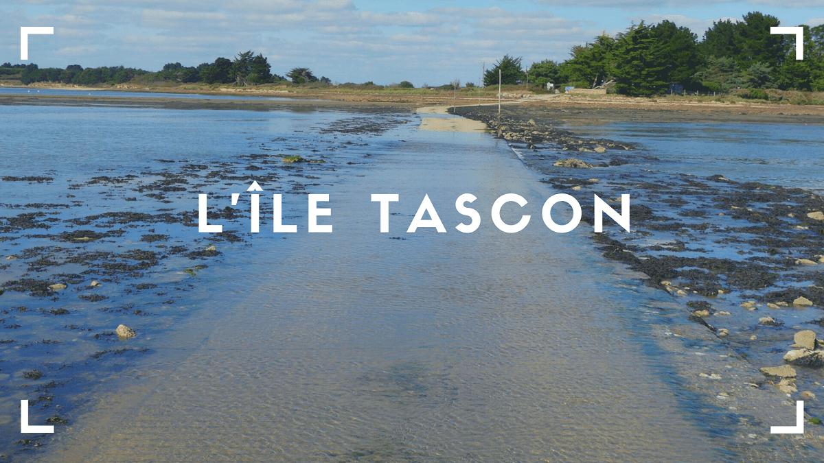 Découvrir l'île Tascon à Saint-Armel