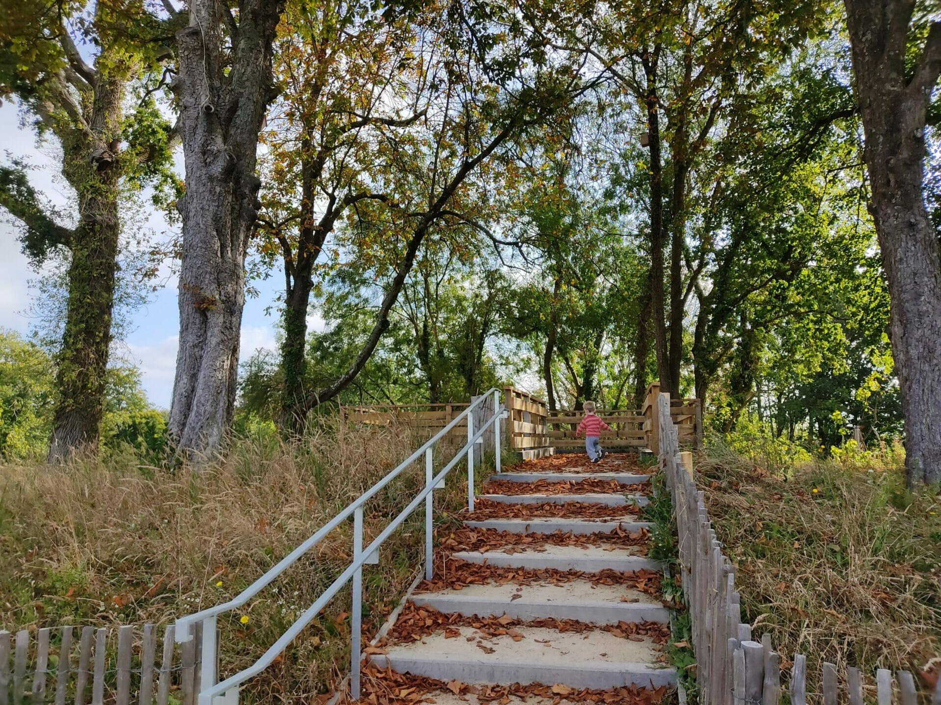 Les parcs et espaces verts à Vannes